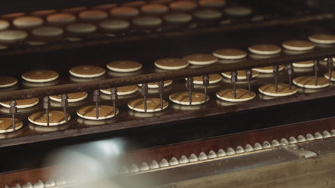 Cookies on the conveyor. Production of round cookies Footage