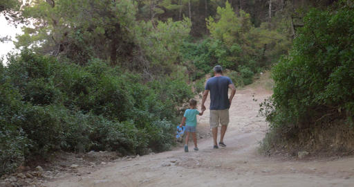 Father and son walking away in forest Footage