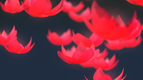 Lotus flower falling animation Animation