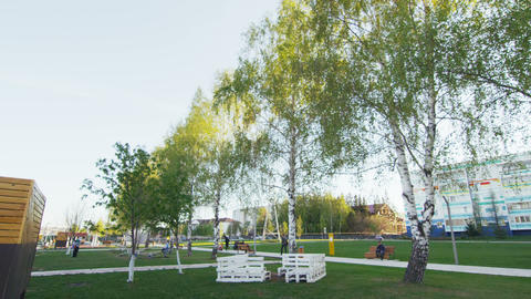 nice park on embankment with birches and benches ビデオ