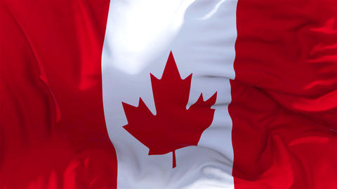 Canada Flag in Slow Motion Smooth blowing in wind seamless loop Background Animation