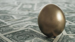 Golden egg on dollar bills Investment concept Footage