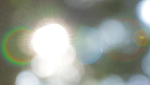 Bokeh blur sun nature lights park Live Action