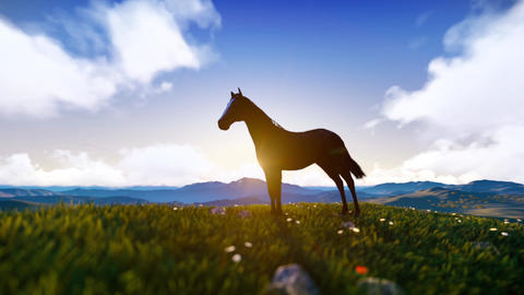Standing and grazing horse with mountains and sunshine behind Animation