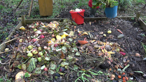 pour vegetable and fruits waste in compost heap Footage