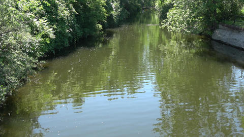 Small hidden water body, canal with vibrant green trees and reflections in Archivo
