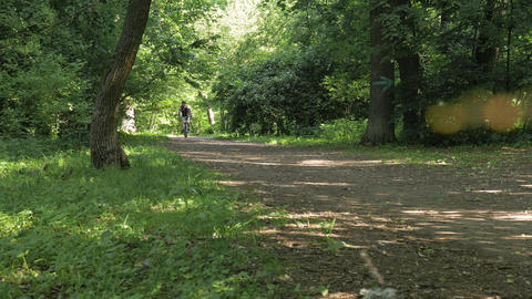 Man on a bicycle in summer in a park Footage