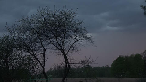 spring thunderstorm sky in evening Live Action