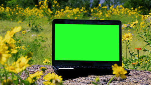Green Screen Laptop Computer Outside. Zoom In Live Action