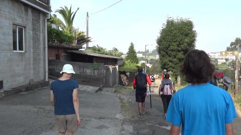 Camino De Santiago 0