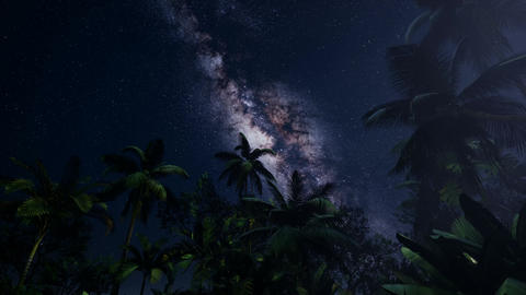 4K Astro of Milky Way Galaxy over Tropical Rainforest Archivo