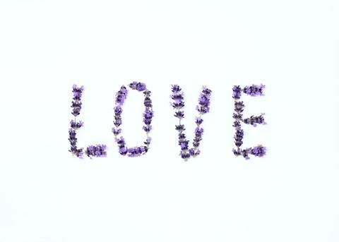 Letters of love from fresh lavender flower フォト