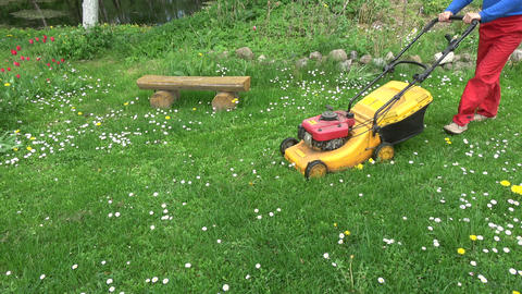 gardener cut grass with lawn mower Live Action