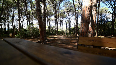 Wooden table and bench in Caprera Footage