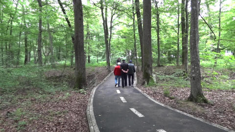 Older men and young cyclists walking on a paved path through the thick forest on Footage