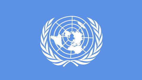 United nations un flag organization Live Action