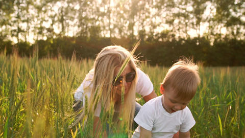 The concept of a happy family. In the rye field the kid... Stock Video Footage