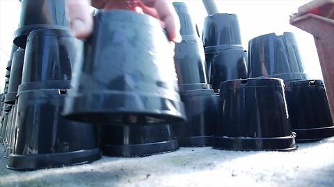 Washing plant pots 影片素材
