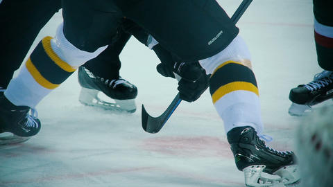 slow motion players of opposite teams wait for puck face-off Live Action