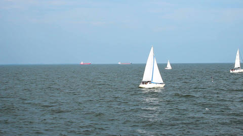 Several sail boats moving across sea on clear sunny day, cargo ships on horizon Footage