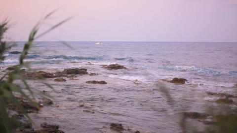 sea landscape with a white boat on sea waves and grass in the foreground on a Footage