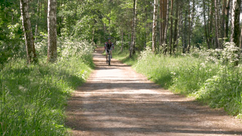 A man is riding a bicycle on a forest path. He leads a... Stock Video Footage