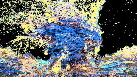 Colored liquid splashing in slow motion Animation