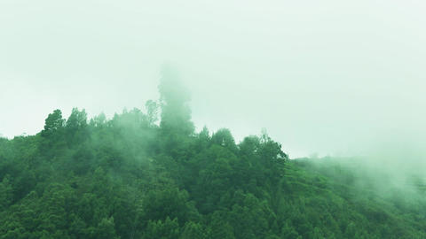 Clouds pass over mountain. Green hillside with trees in cloud scraps Live Action