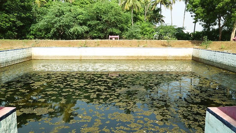 Temple pond, Exterior Hindu Temple Pond Stock Video Footage