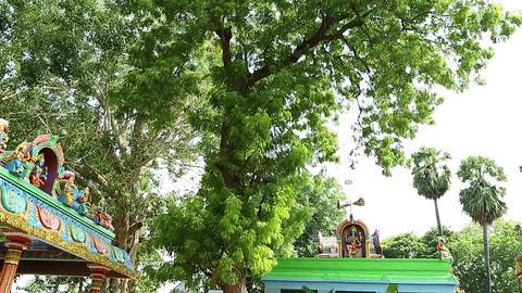 Tilt Down Exterior Traditional Hindu temple Footage