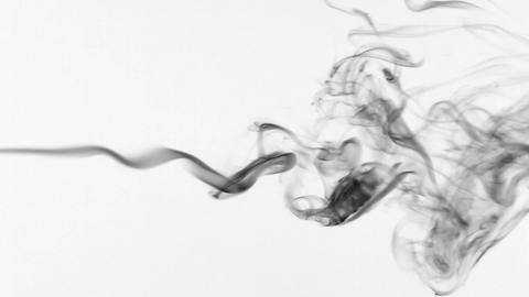 Beautiful twists of black smoke on a white background Live Action