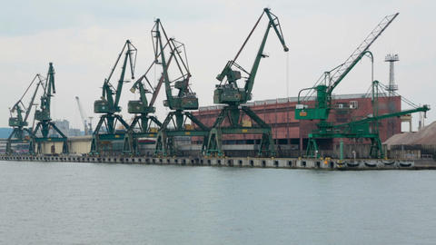 Huge industrial cranes at sea port, cargo transportation, shipbuilding, business Footage