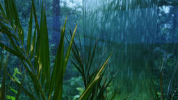 Rain outside windows of green winter garden Footage