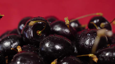 Cherry. Ripe cherries rotating over red background. Rotating Black Ripe Sweet Live Action