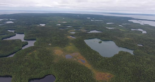 Aerial view of the forest lake Footage