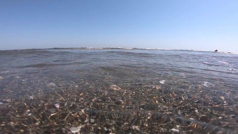 Under the Beautiful Sea GIF