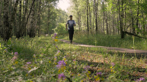 A middle-aged man, doing sports. He goes for a walk in the woods. Leads a Archivo