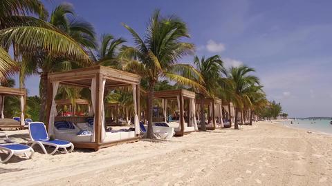 CocoCay Beach Bahamas GIF