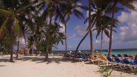 Coco Cay Beach Bahamas GIF