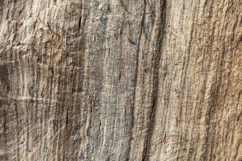 texture of a gray brown stone Photo