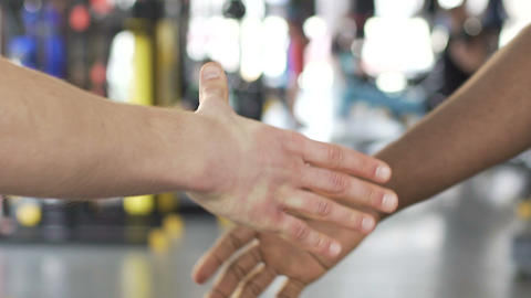 Caucasian and afro-american buddies agreeing on cooperation in gym, slowmotion Live Action