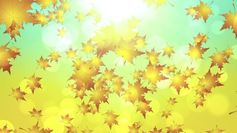 Warm Autumn Leaves Falling Animation