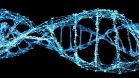 Digital Plexus DNA molecule random digits Loop Alpha Channel Animation
