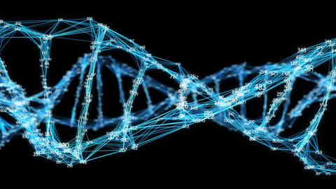 Digital Plexus DNA molecule random digits Loop Alpha Channel, Stock Animation