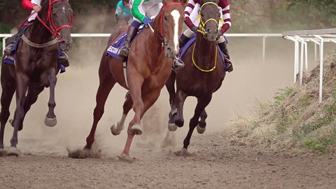 Rounding of the Racecourse on Horse Races. Slow Motion Footage