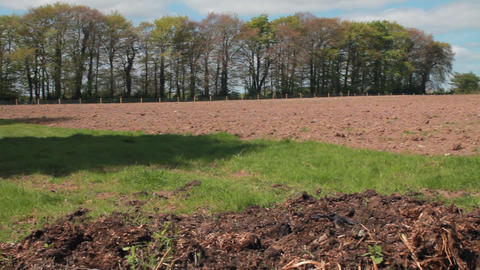 An Irish field in early spring Stock Video Footage