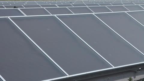 Solar panels power plant Live Action