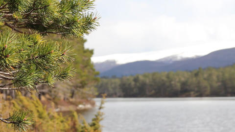 View of the mountains and the lake Stock Video Footage