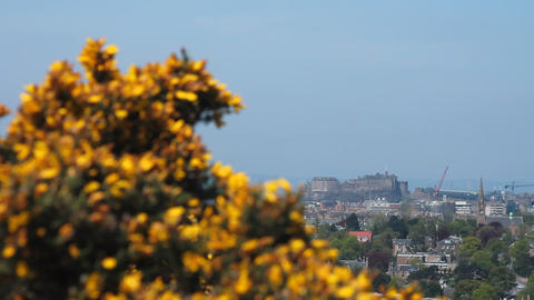 View of the castle in Edinburgh Stock Video Footage