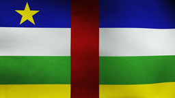 Central African Flag stock footage